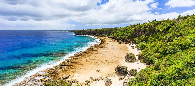 Mobydick Tonga