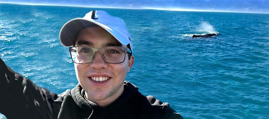 Mobydick Alex whales